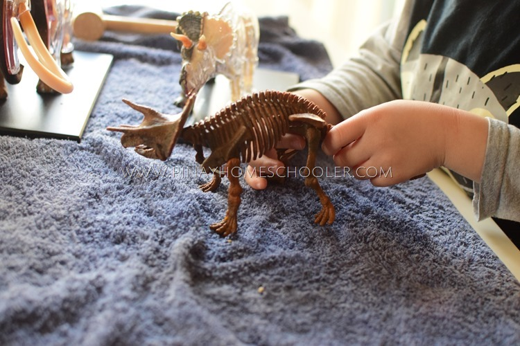 Dinosaur Excavation Activity