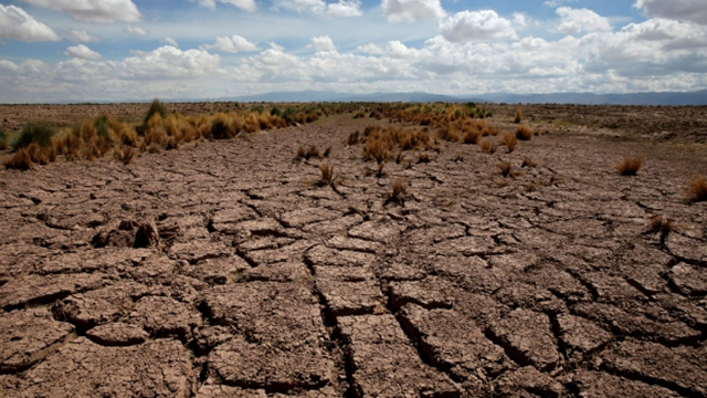 A dried farmland is seen during the worst drought in 25 years in El Choro, Bolivia, on 1 December 2016. Photo: David Mercado / Reuters