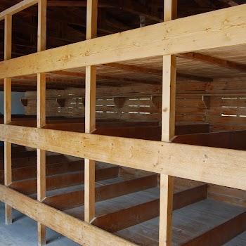 Dachau 17-07-2014 13-49-01.JPG