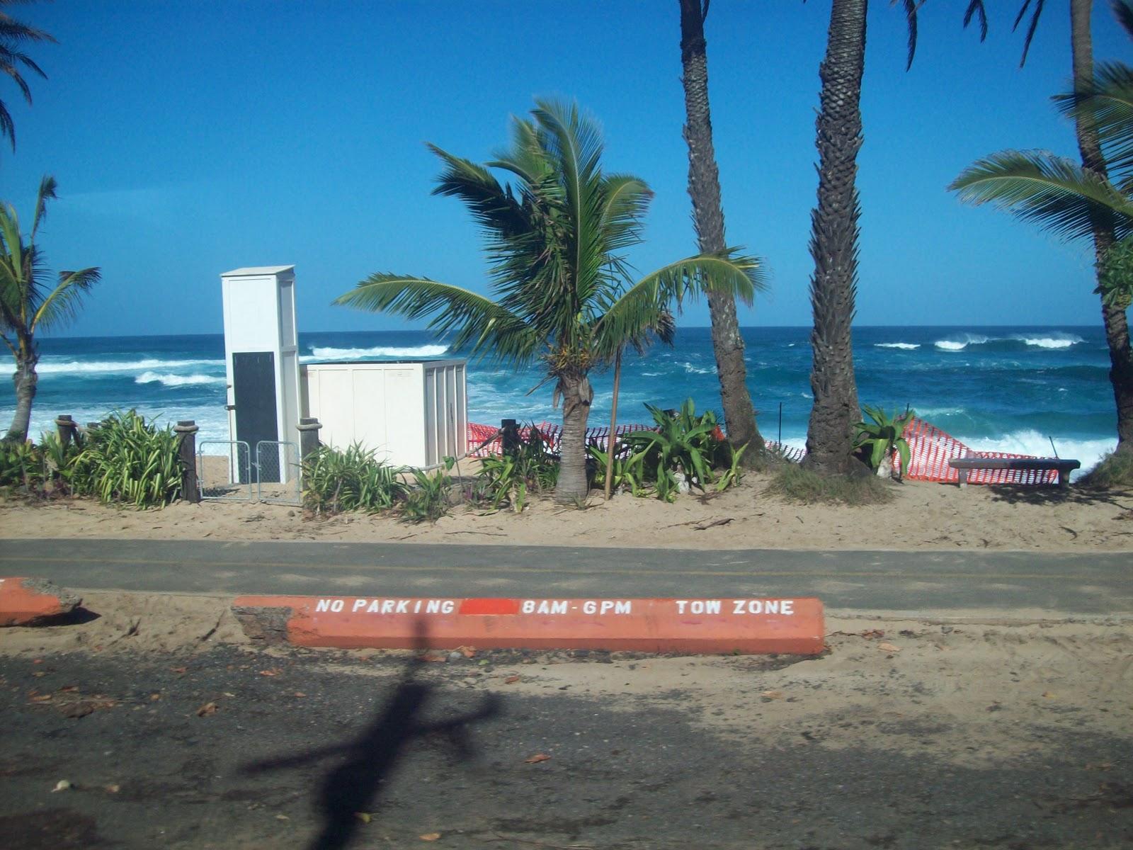 Hawaii Day 3 - 114_1084.JPG