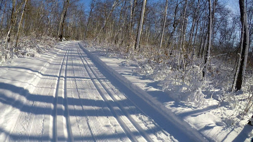 Sukkerbusk ski trail. New track cut both Thursday and Friday mornings.