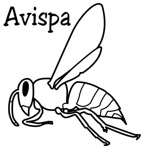 Pinto dibujos avispa para colorear - Fotos de insectos para imprimir ...