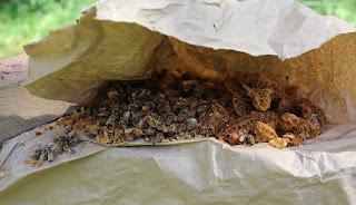PLC Honey Fiesta 7/10/16 - Bees%2Bwax%2Bafter%2Bextration.JPG