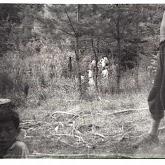 n026-031-1968-tabor-szigliget.jpg