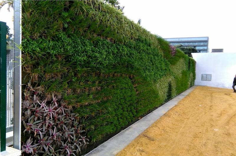 Jardín vertical en Cádiz - Parque Genovés