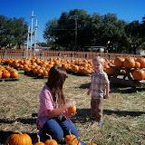 Pumpkin Patch 2014 - 116_4402.JPG