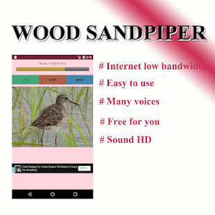 Sound per bird, freshwater lane - náhled