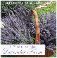 CONFESSIONS OF A PLATE ADDICT A Visit to the Lavender Farm2