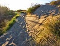 Дюны в Марбелье