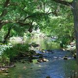 04-04-12 Hillsborough River State Park - IMGP9658.JPG