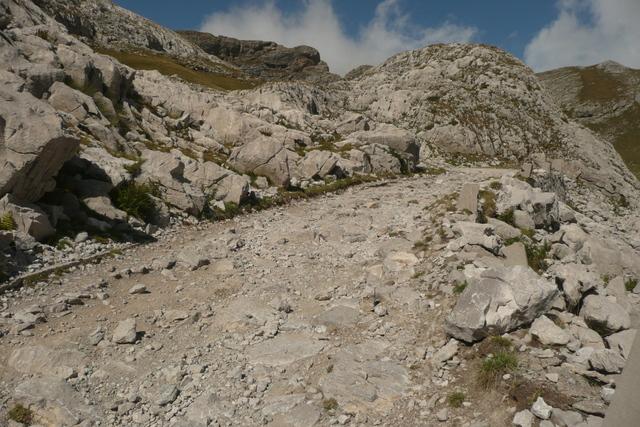 Comparo et retour d'expés sur ≠ Trails dispos P1050995v%20Thierry