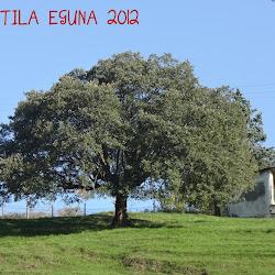 Tortila Eguna 2012
