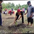 Geliat Desa Sidoharjo-Gedeg Mojokerto Peringati Hari Sejuta Pohon