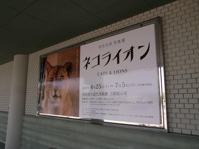 ネコライオン秋田県立近代美術館
