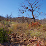 11-09-13 Wichita Mountains Wildlife Refuge - IMGP0422.JPG