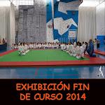 EXHIBICIÓN FIN DE CURSO 2014