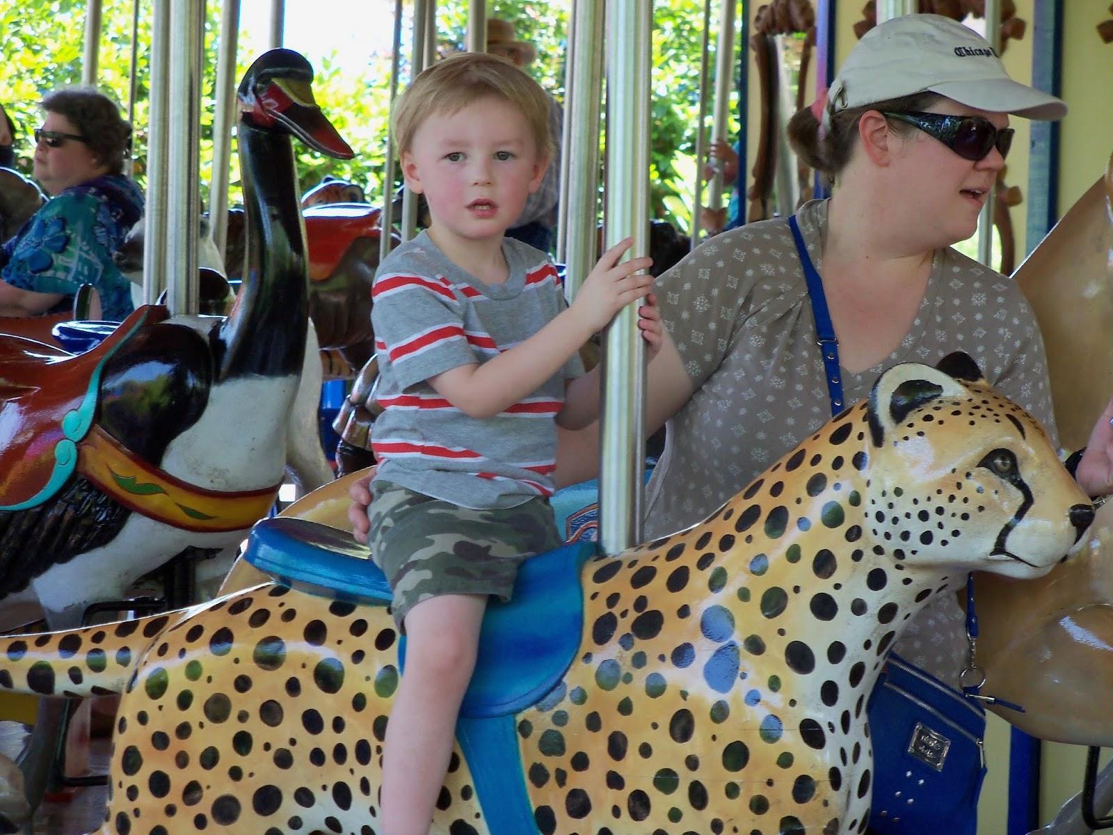 Houston Zoo - 116_8573.JPG