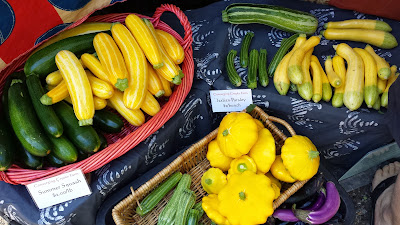 A Farmers Market Day in August - Summer Squash at Portland Farmers at PSU
