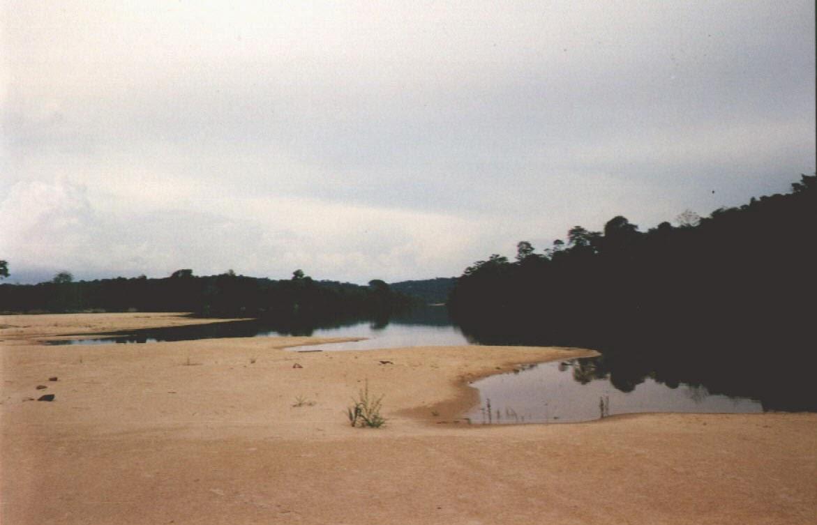 Sandstrand am Rio Tapajos