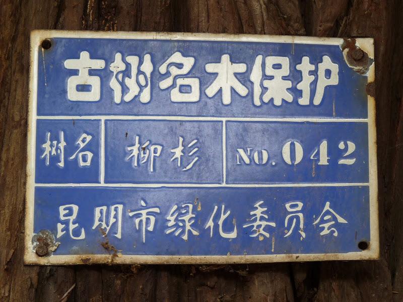 Chine .Yunnan . Lac au sud de Kunming ,Jinghong xishangbanna,+ grand jardin botanique, de Chine +j - Picture1%2B375.jpg