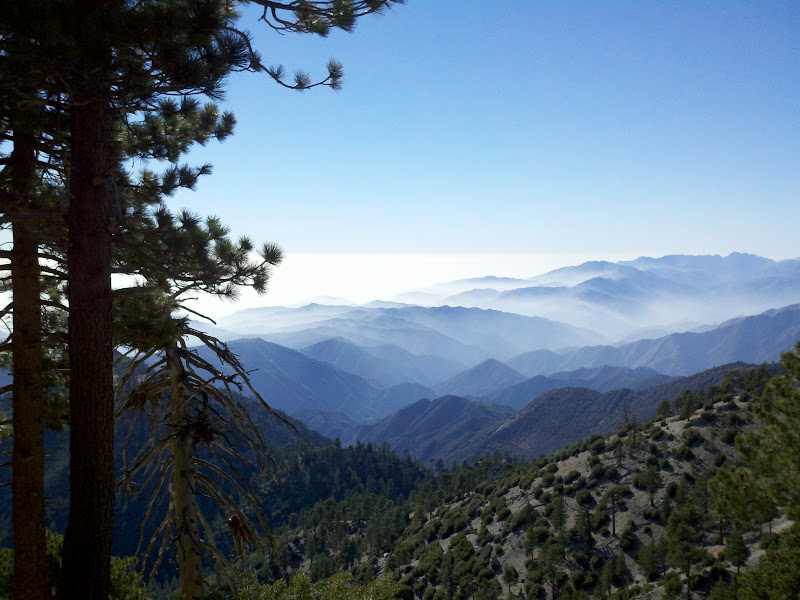 Mount Baldy • San Gabriel Mountains