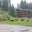 2016. július 12. - Brenta-Dolomitok: túra  túra a Nambione-tóhoz és Madonna di Campiglio