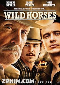 Bầy Ngựa Hoang - Wild Horses (2015) Poster