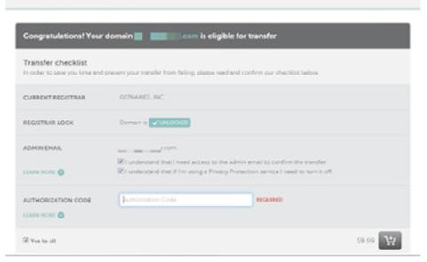 Domain Payment Details