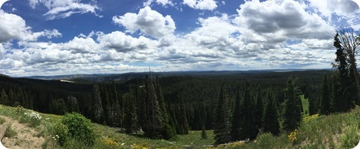 Panoramic of Yellowstone Mountains