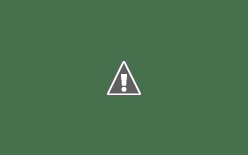 Plantilla de doble página de periódico o revista, formato InDesign, con muchas fotos y declaraciones breves