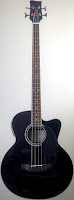 Legacy B60 acoustic Bass Guitar