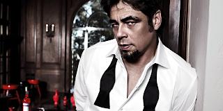Benicio del Toro  Net Worth, Income, Salary, Earnings, Biography, How much money make?