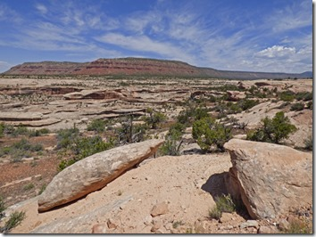 View of Natural Bridges National Monument