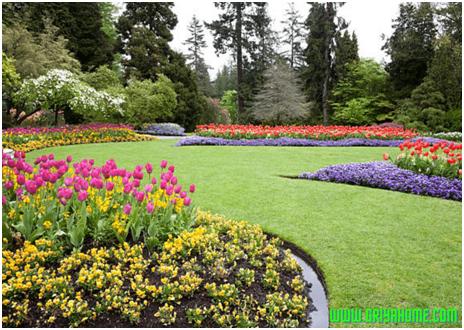 Cara Mengenali Kondisi Fisik Lahan Sebelum Menjadi Taman