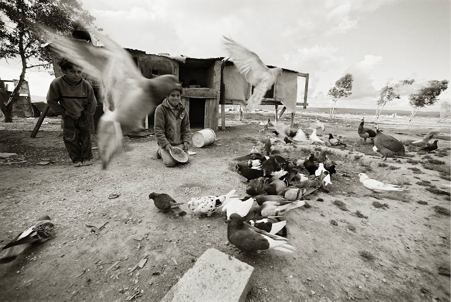 """Фотоконкурс """"Моё открытие Израиля"""": кто победил? 2"""