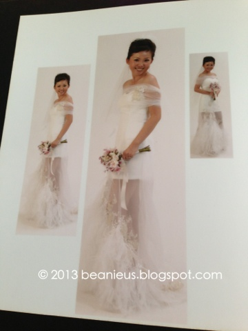 Hip Wedding Gown, Feathers on gown