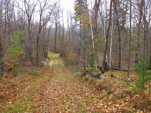 Bootleg extension of Bullhead Lake trail