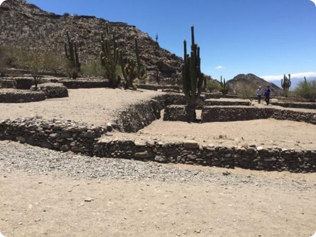 quilmes-ruinas-cactus