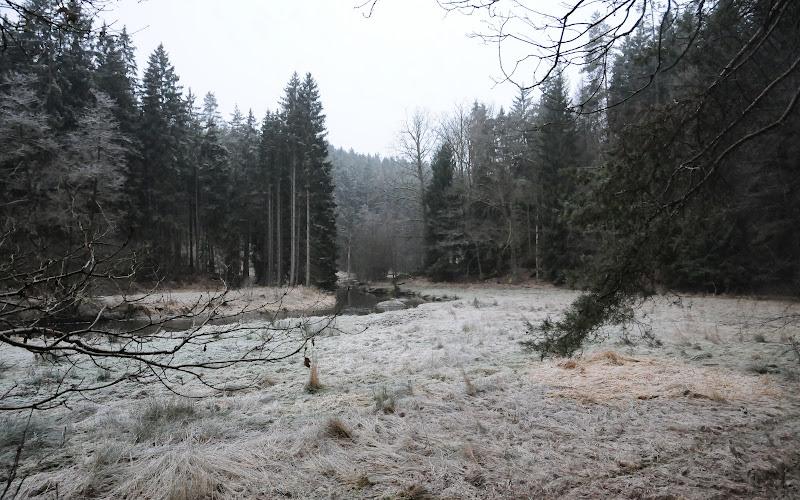 20140101 Neujahrsspaziergang im Waldnaabtal - DSC_9815.JPG