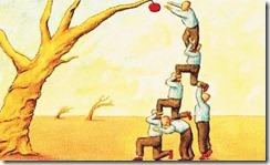 cooperação-social