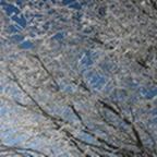 tn_lachaux-2010-12-40.jpg