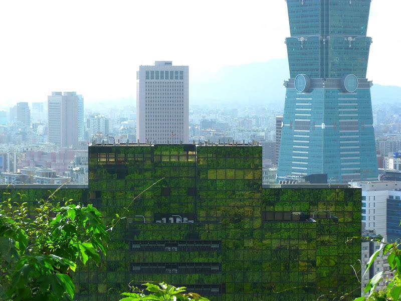 Taipei. Si Shou shan, en plein coeur de Taipei. Accès par un chemin bien plus sauvage. - P1240845.JPG