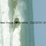 _DSC9721.thumb.jpg