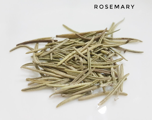 Manfaat dan Khasiat bunga rosemary
