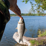20160509_Fishing_Babyn_008.jpg