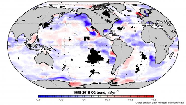 Global map of the linear trend of dissolved oxygen in the ocean at the depth of 100 meters. Graphic: Georgia Tech