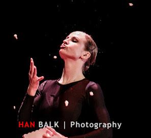 Han Balk Wonderland-7897.jpg