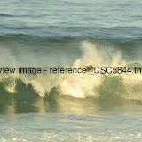 _DSC5844.thumb.jpg