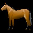 Mooie paardennamen
