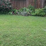 Gardening 2012 - IMG_3514.JPG